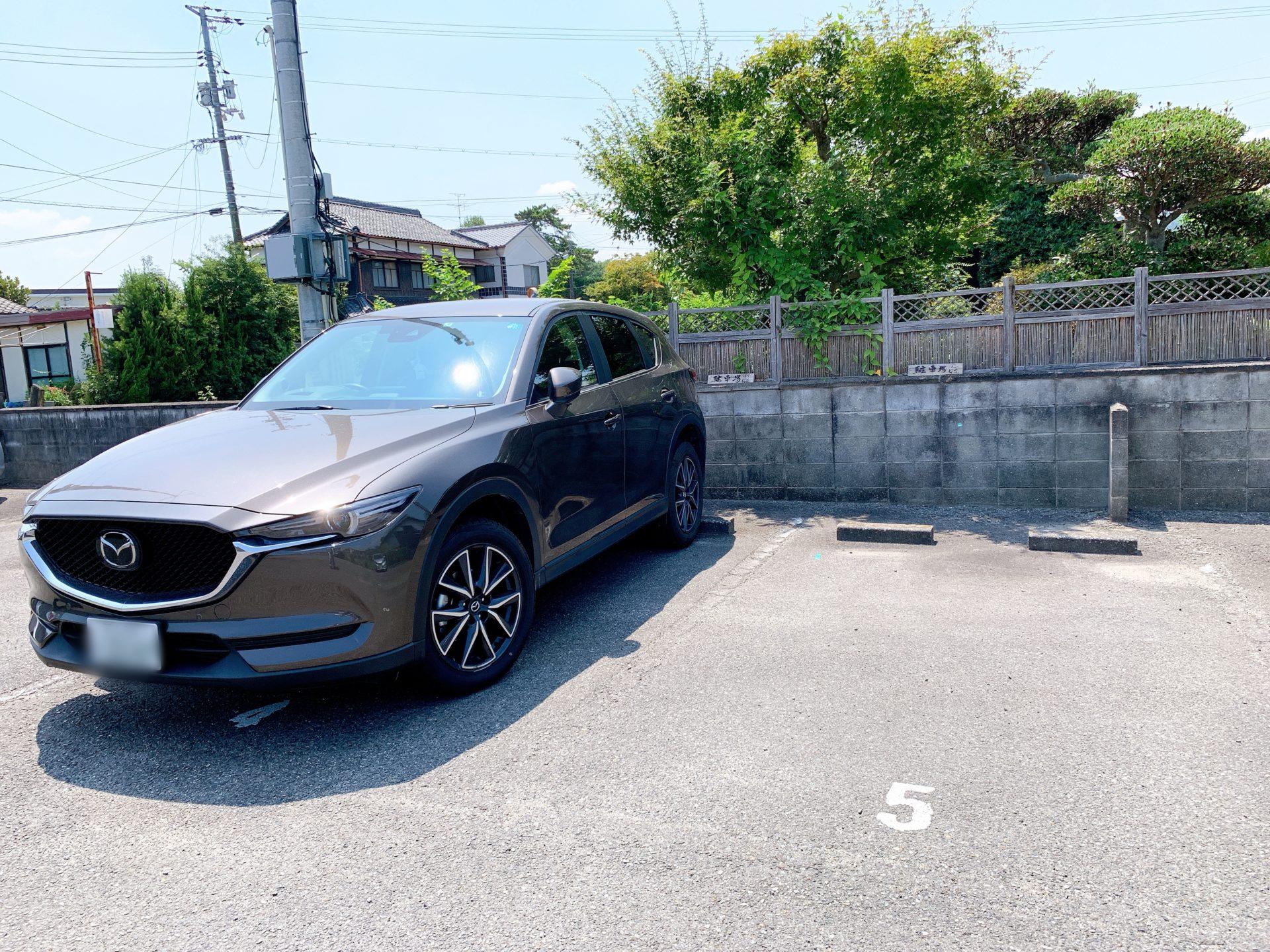 桜花駐車場1